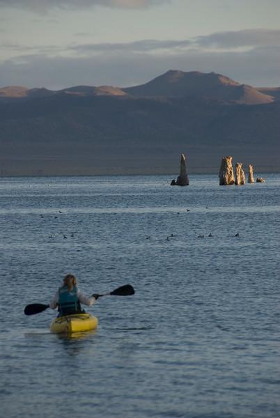 Local Kayaker at Sunrise