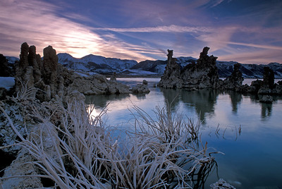 Reeds and Tufa structures after sunset.  Mono Lake, California