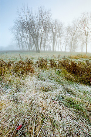 "A frosty, foggy sunrise.  *For information on purchasing prints and canvas gallery wraps, click the ""Purchasing"" tab at the top of the page. If viewing on your mobile device, scroll to the bottom of the page and click the ""Full Site"" tab to view as if you were on your home PC and then go to the ""Purchase"" tab to for purchasing info. In mobile mode, you will not see the standard navigation bar with the ""Purchase"" tab."