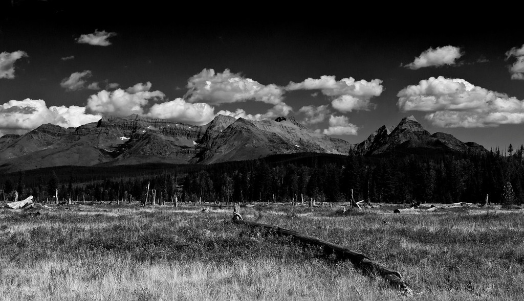 With Thanks to Ansel Adams