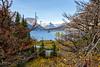 Glacier National Park smugmug (3 of 5)