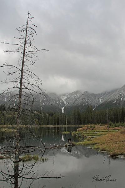 A scene taken May 29, 2010 near West Yellowstone, MT.