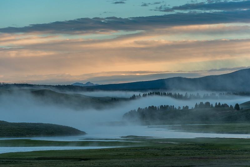 morning mist rises from the Yellowstone River in the Hayden Valley