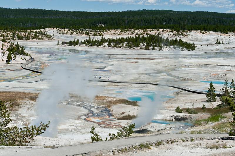 Porcelein Basin, Norris Geyser Basin