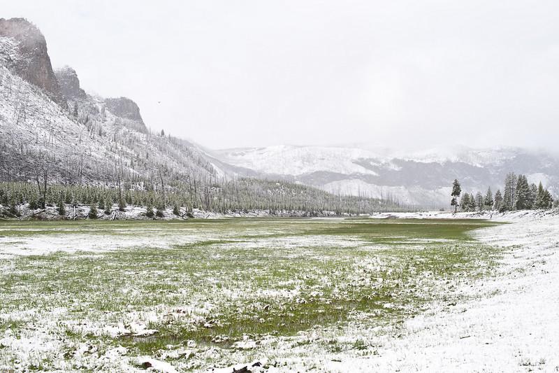 Madison Valley, Yellowstone