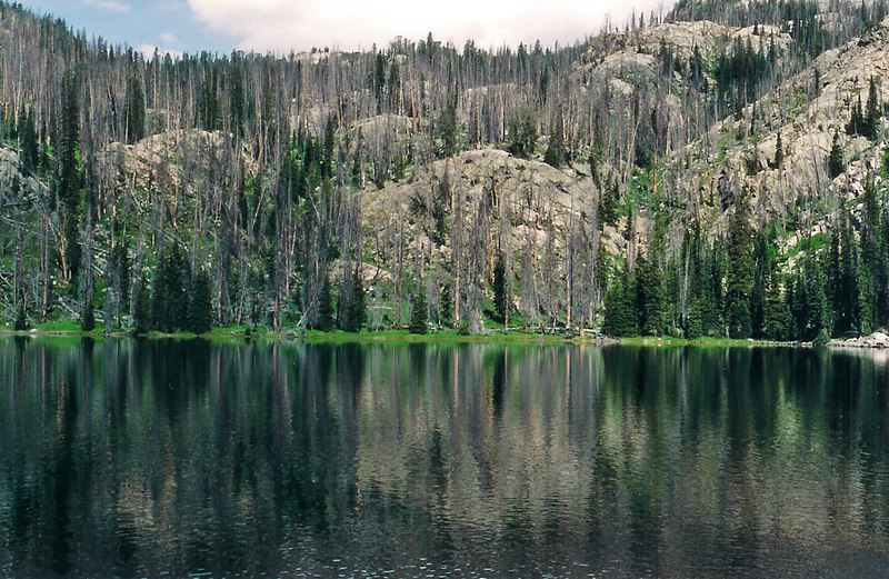 High Mtn lake, Beartooth Mtns