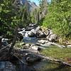 Beside a creek along the Bitterroot Mountains
