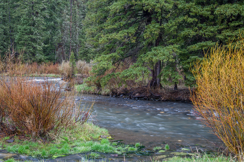 Hyalite Creek, at the Langohr Campground, Gallatin National Forest.