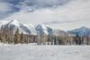 Swan Mountain Ranger, Flathead National Forest, Condon, Montana