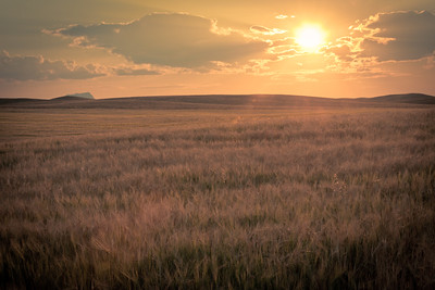 Golden Montana Sunset