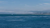 20110416_Monterey_Saturdayday_0006
