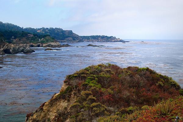 Monterey Bay - August 2009