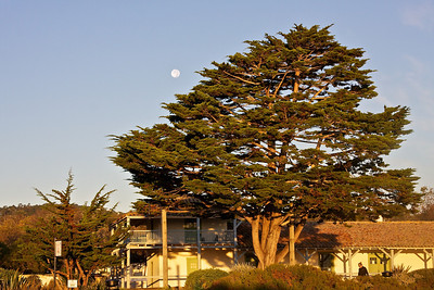 Morning moon in Monterey