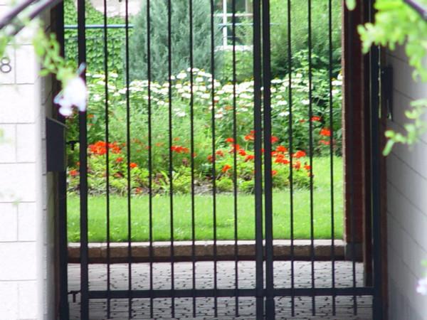 """Garden full of flowers in """"Vieux Montréal"""""""