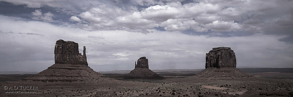 Three Butte Panoramic