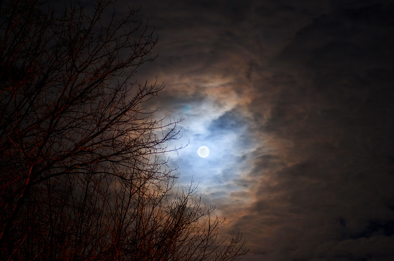 02a Moon Rise Jan 2009 (nik tonalcontrast brillwarm).jpg