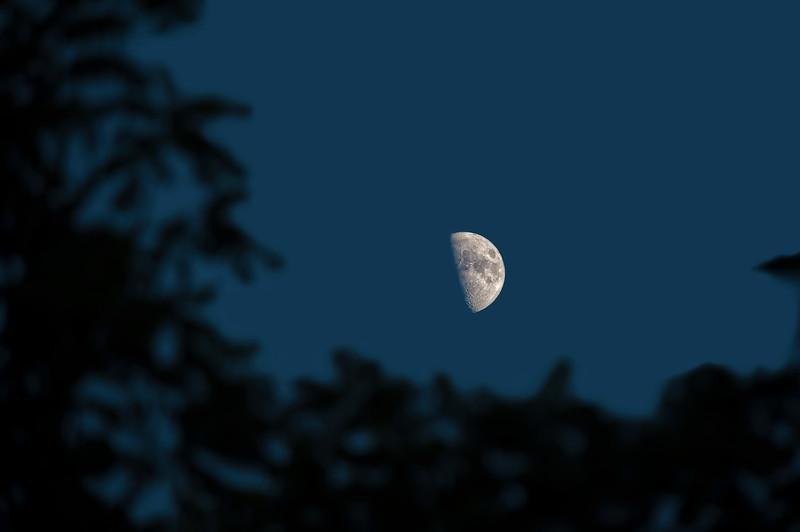 01 Moon July 2011