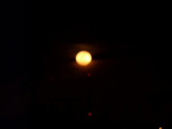 2010 01 30 Moondance