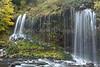 11-17 Mossbrae Falls-0677