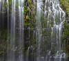 11-17 Mossbrae Falls-0653