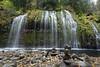 11-17 Mossbrae Falls-0679