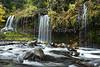11-17 Mossbrae Falls-0659