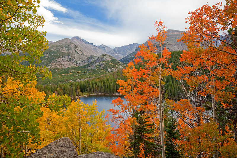 (RM-10005) Longs Peak and autumn aspens above Bear Lake in Rocky Mountain National Park, Colorado