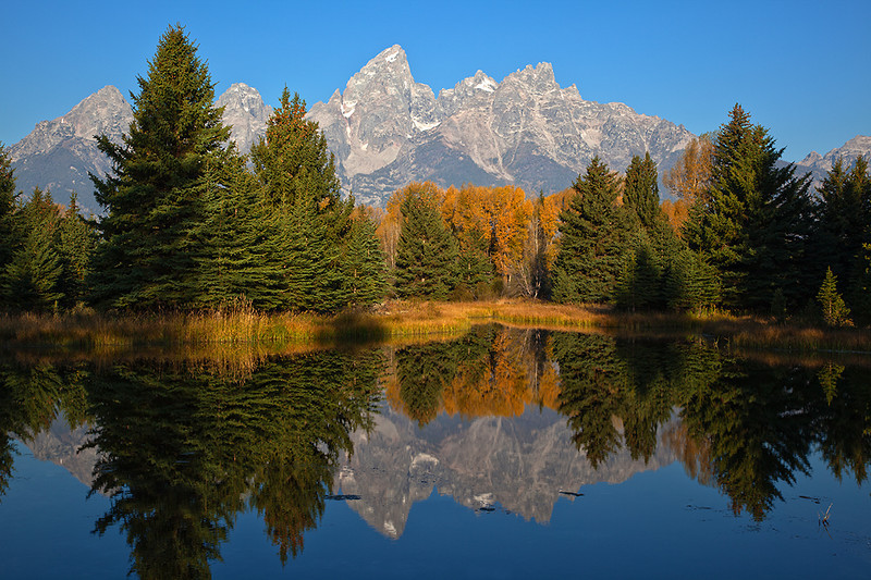 (GT-09063-5)  Tetons from Schwabacher's Landing; Grand Teton Nat'l Park, Wyoming.