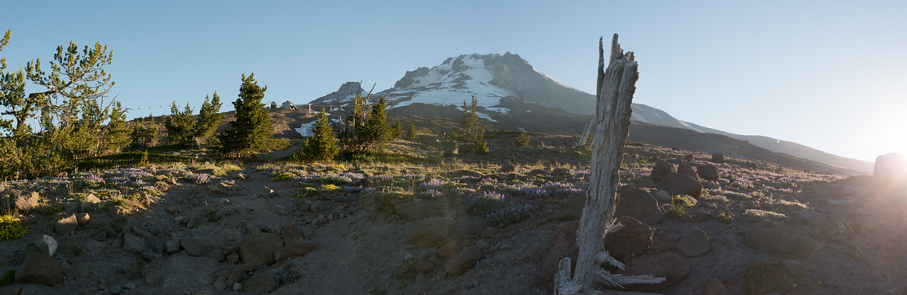 Panorama image (3 shots stitched together in Adobe Lightroom)