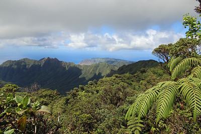 Mount Kaala, Oahu