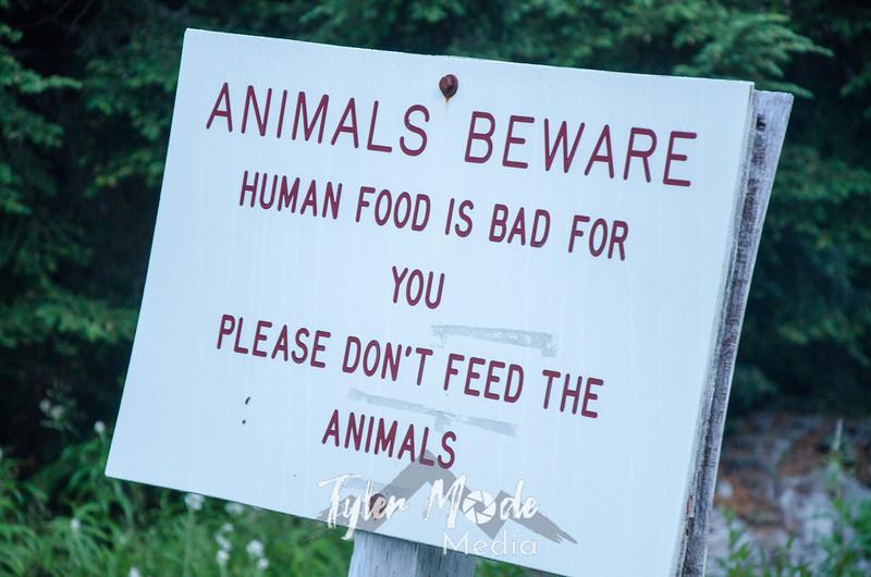 9  G Animal Sign