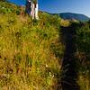 38  G Trail and Snag V