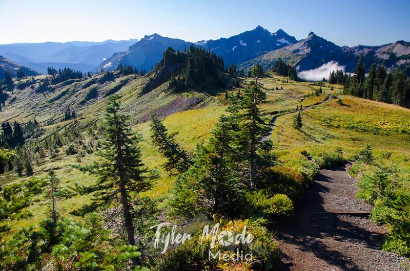405  G Trail Down and Tatoosh