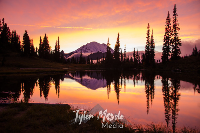 718  G Rainier and Tipsoo Lake Sunset Sharp