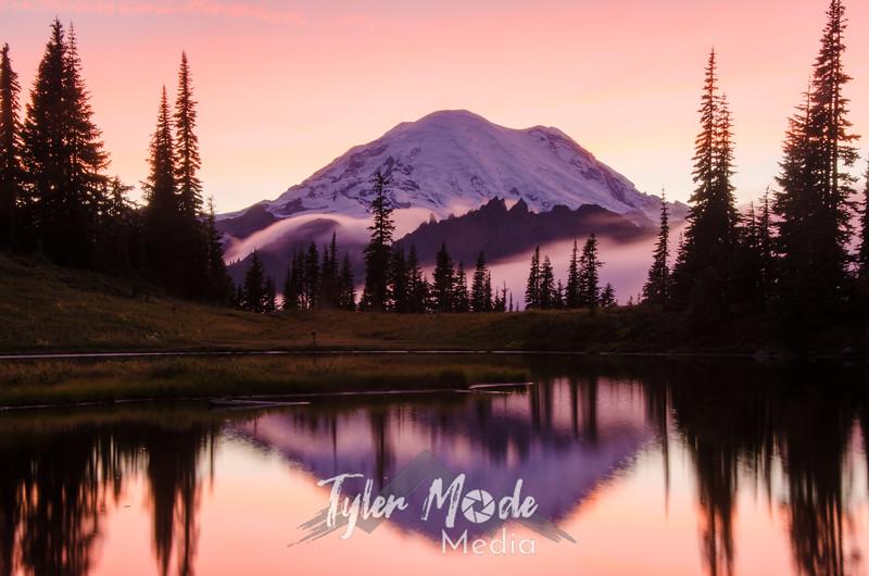 727  G Rainier and Tipsoo Lake Sunset