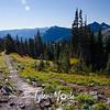 428  G Trail SE