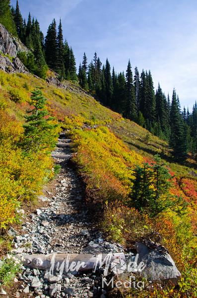 887  G Trail View Up V