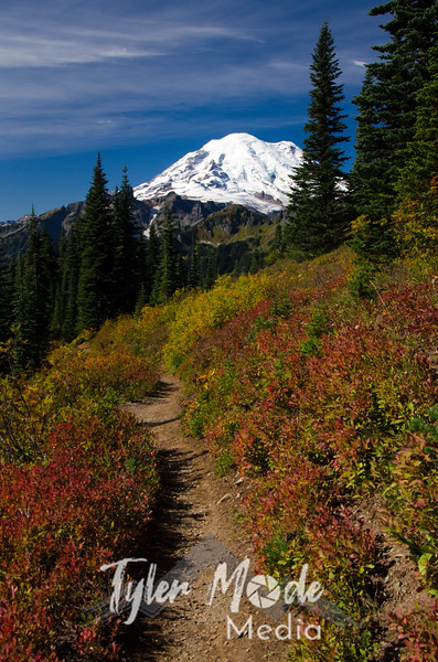 1078  G Rainier and Fall Colors Trail V