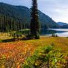 914  G Dewey Lakes and Fall Colors V