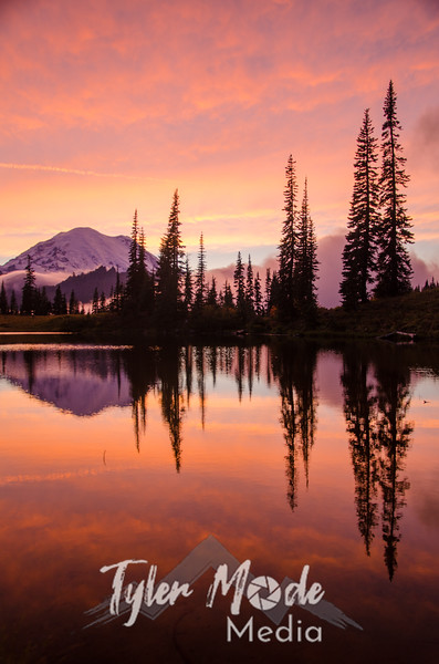 711  G Rainier and Tipsoo Lake Sunset V