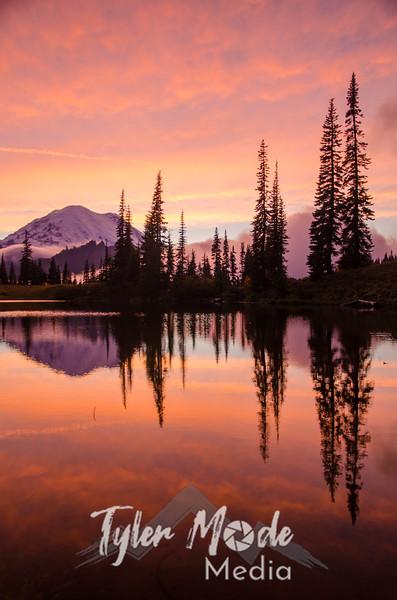 711  G Rainier and Tipsoo Lake Sunset V