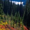 883  G Dewey Lakes and Fall Colors V