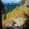 964  G Trail SW