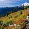 1063  G Rainier and Fall Colors Trail