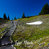 419  G Trail and Remaining Snow