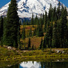 1029  G Rainier and Fall Colors Tarn