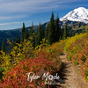 1082  G Rainier and Fall Colors Trail