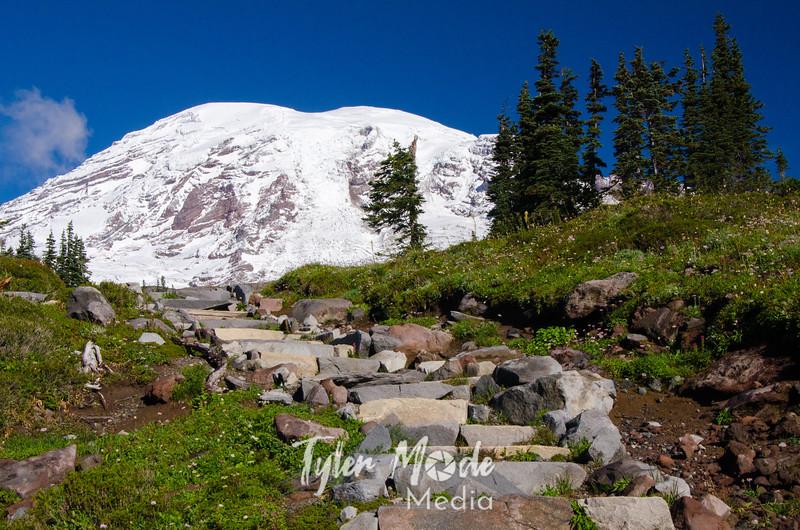 434  G Rainier Above Trail
