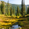 937  G Dewey Lakes and Fall Colors Tarn V