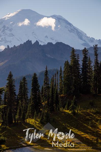 615  G Rainier Tipsoo Lake and Hikers V